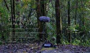 Title:Mt Kinabalu , Malysia Field recording by Junichi OGURO Year:2018